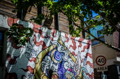 Brunswick Street Art-3036