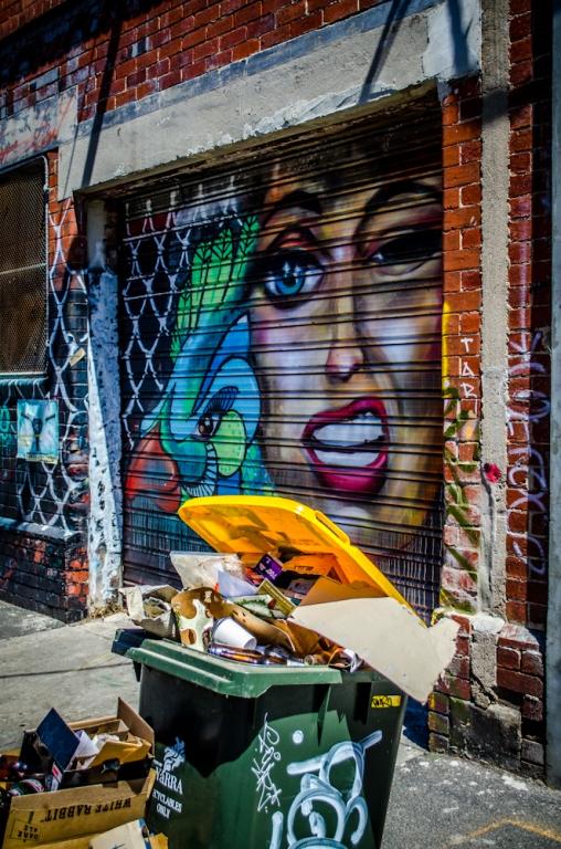Brunswick Street Art-3068