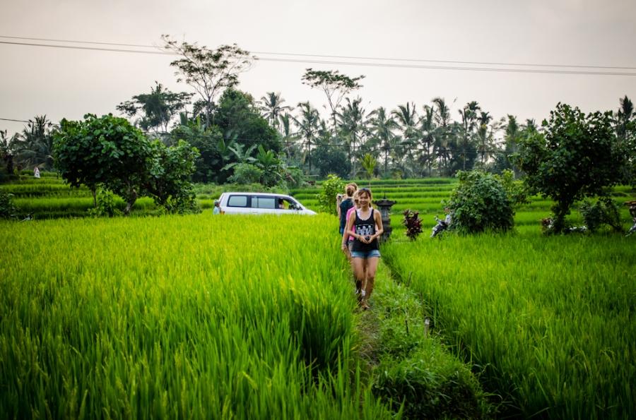 Bali 2014-4594-2