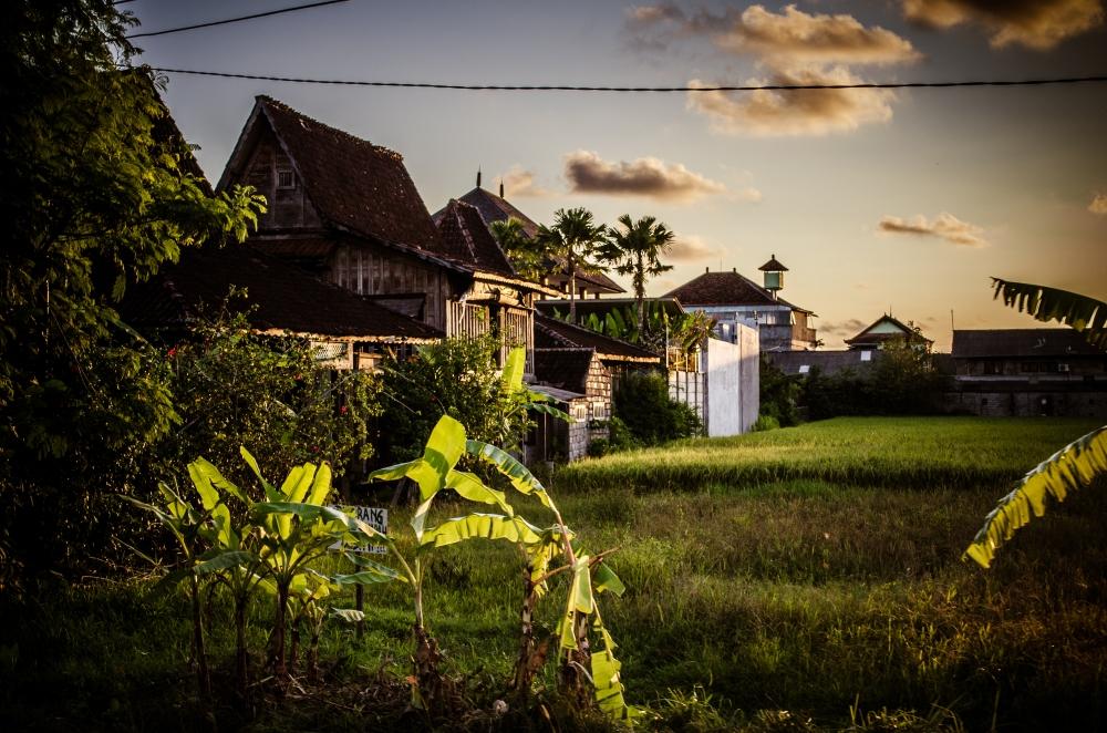 Bali 2014-4647-2