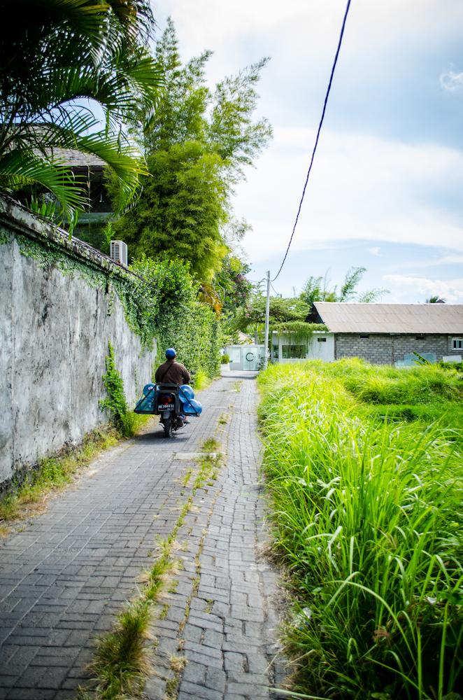 Bali 2014-4768